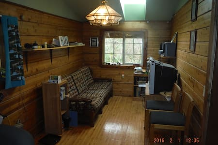Modern,comfortable rooms in Rain forest wilderness - Forks