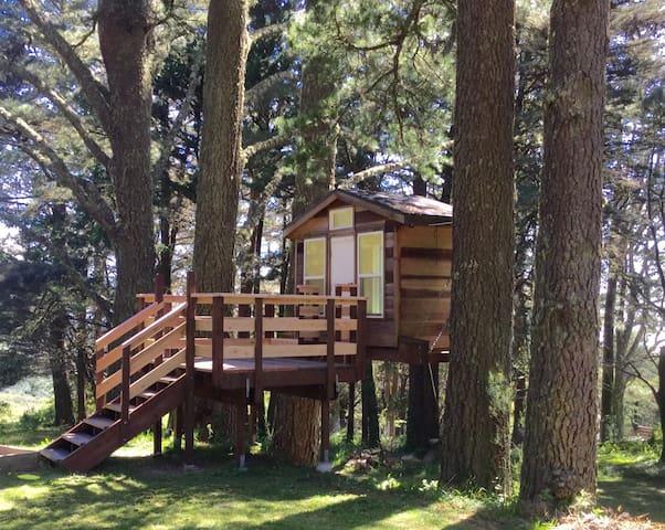 Woodside treehouse!!!