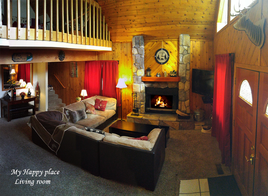 Living area with cozy fireplace