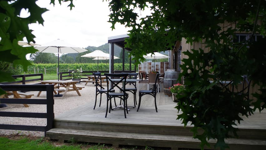 Vineyard Views from Cafe