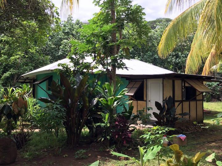 Tropical Eden, Couché de soleil et plage privé...