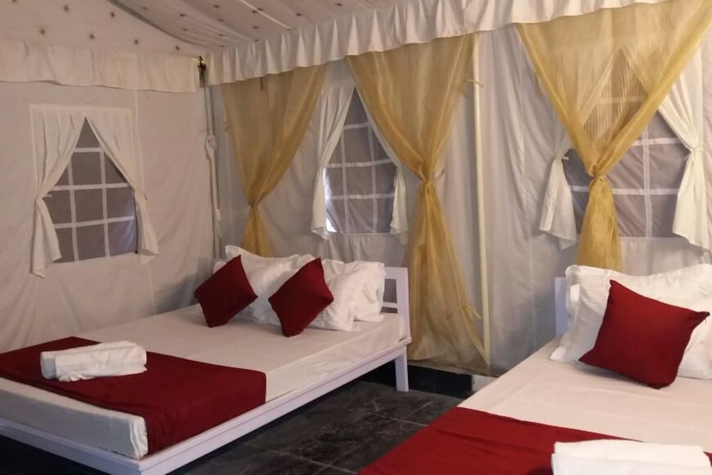 Luxurious Camps