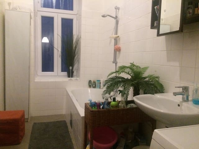 geteiltes Badezimmer / shared bathroom