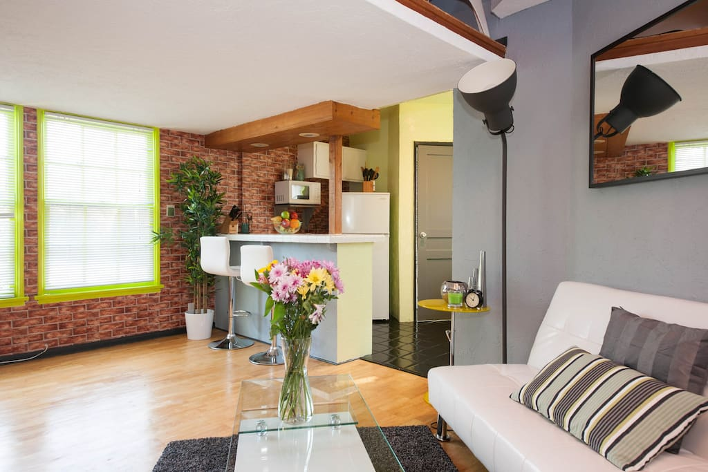 Beautiful Modern Loft Great Area 2 Apartments For Rent