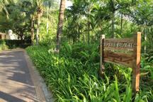 hua hin pool villa @ sheraton blue lagoon *new*