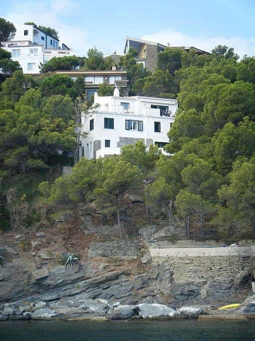 Mediterranean pines, rocks and ...sun same house from the sea