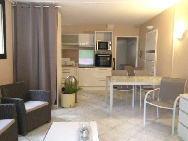 Appartement T2 meublé et équipé de 45m2 à Biot - Biot - Apartment