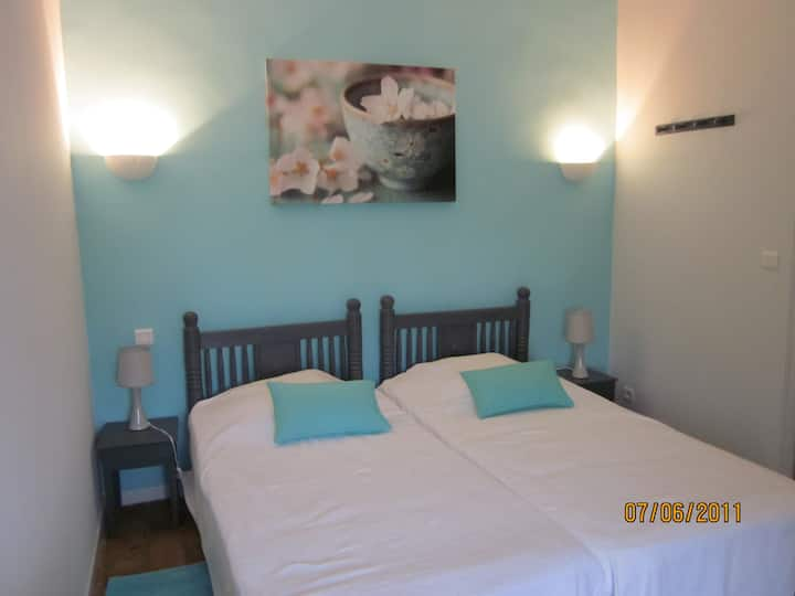 Twin room-Turquoise-Standard-Private Bathroom-Countryside view