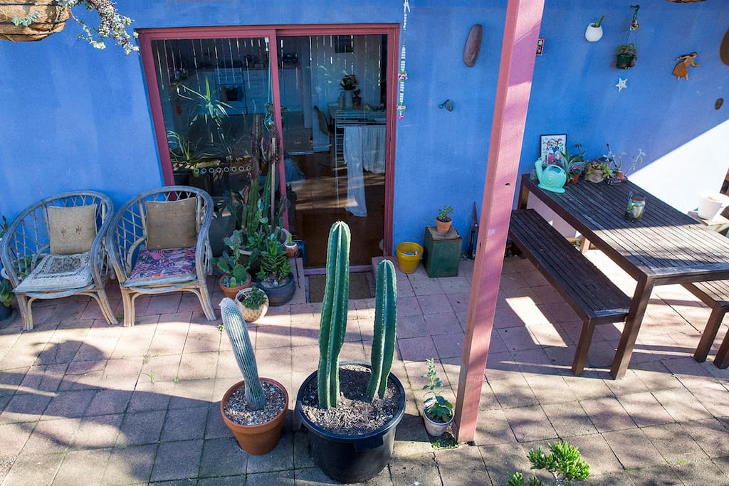 Comfortable outdoor chairs and amazing cactus and succulent garden.