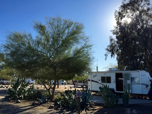 Darling & Immaculate RV Camper - Maricopa