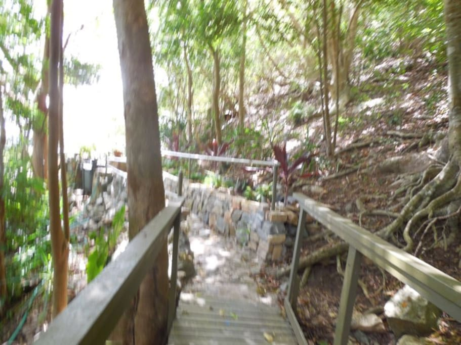 Stone walkway and rails to the house. During rainy season I have a lovely waterfall! You'll hear critters and Caribbean sounds in my quiet neighbourhood. Mother Nature is everywhere.