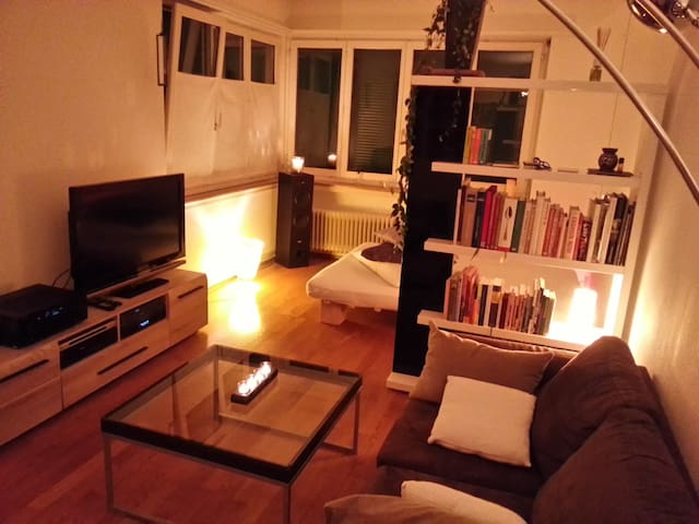 Cozy 1 1/2 room Studio-flat in Zurich Wollishofen - Zürich