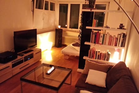 Cozy 1 1/2 room Studio-flat in Zurich Wollishofen - ซูริก - อพาร์ทเมนท์