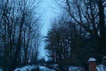 Frosty days of Winter