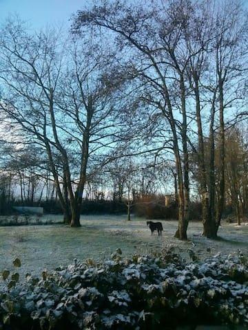 Seasonal views
