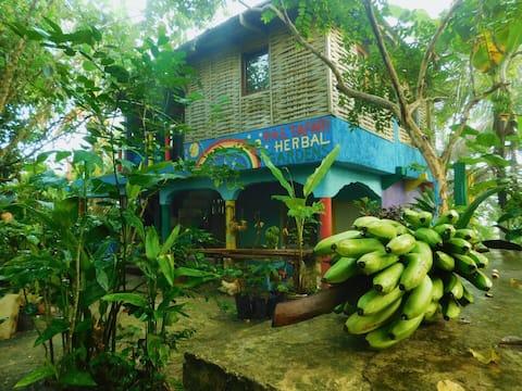 Rastafari Herbal Gardens