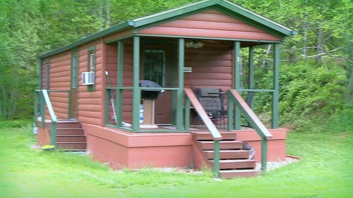 #3 - Americana Cabin - Asheville River Cabins