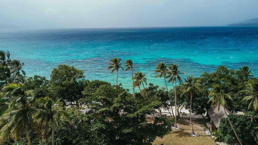 Whispering Palms Beach House - Absolute Beachfront