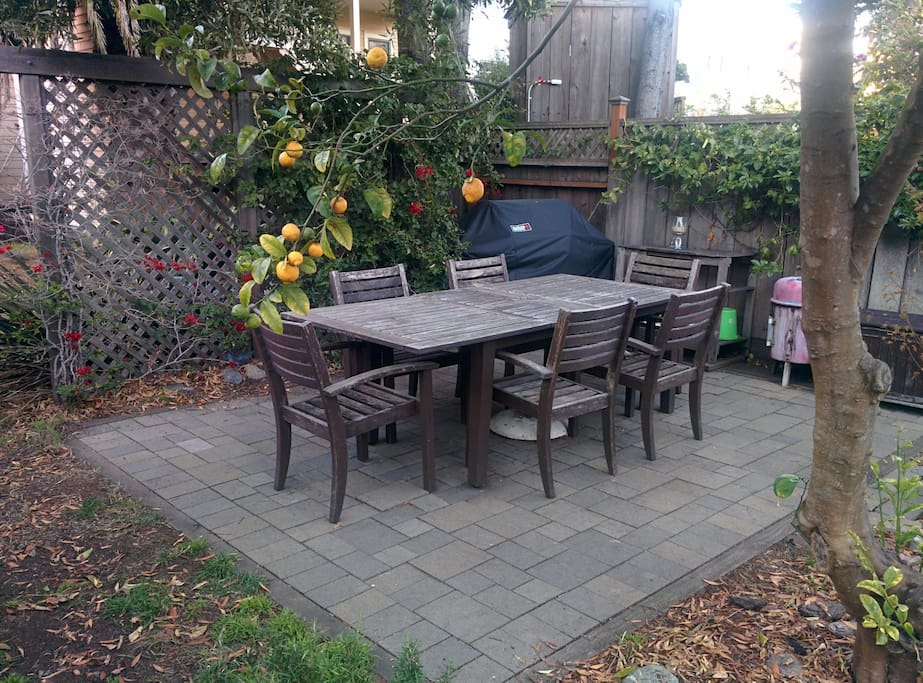 Backyard patio and grill under the lemon tree