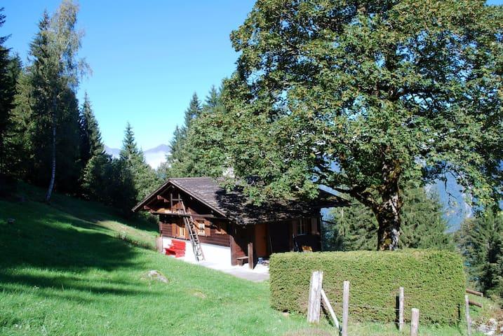 Gemütliches Ferienhaus ob Brienz BE, 1171 m ü M - Brienz - Ev