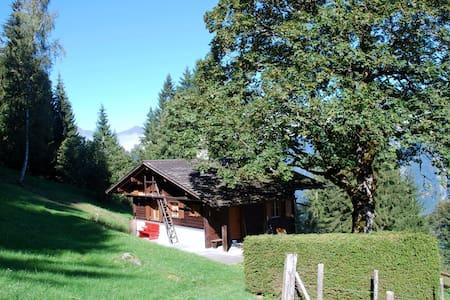 Gemütliches Ferienhaus ob Brienz BE, 1171 m ü M - Brienz - Hus