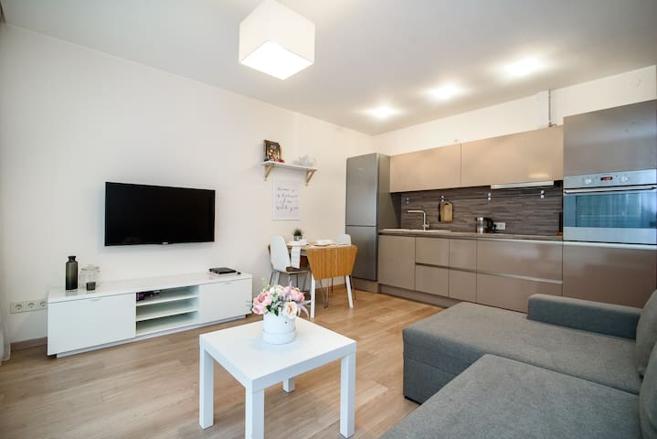Apartment in Vilnius
