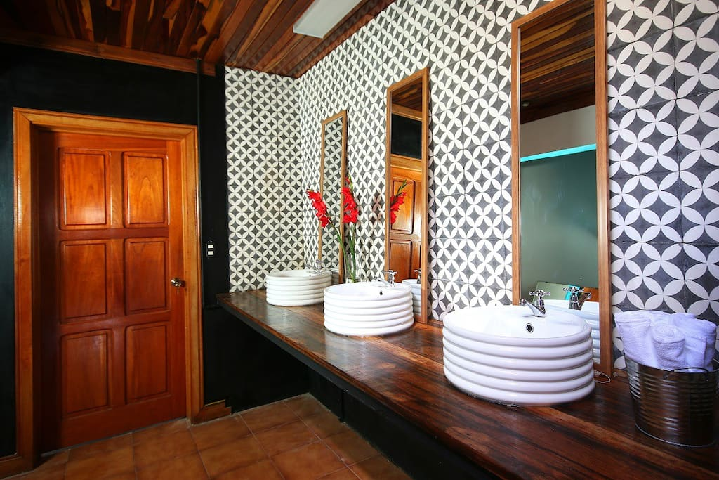 Bathrooms. Hand painted tiles by local artisan.