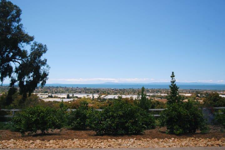 Organic Farm with 180 Ocean Views