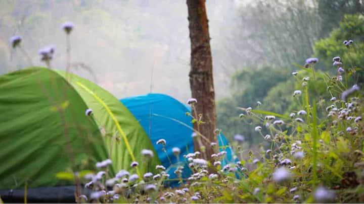 Encamp Adventures - Guwahati Hillside Camping