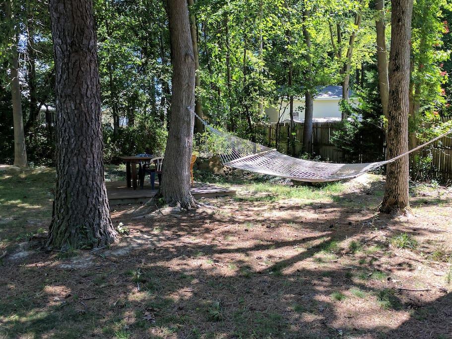 Hammock in the backyard