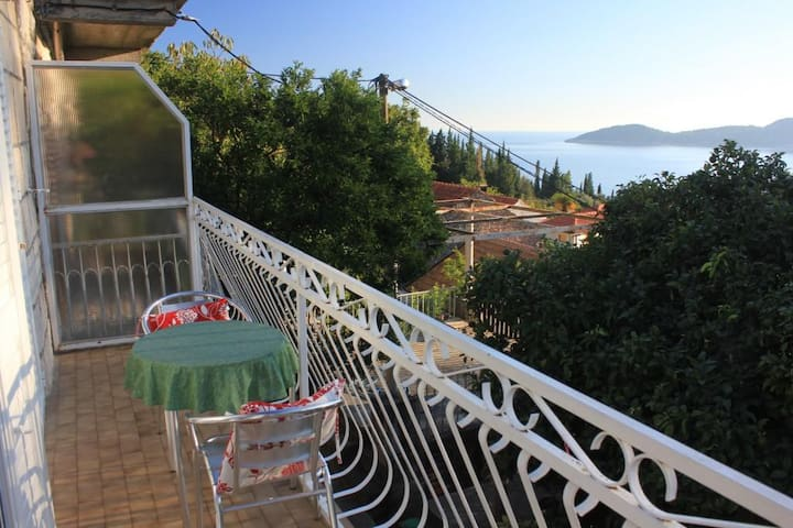 One bedroom apartment with terrace and sea view Trsteno (Dubrovnik) (A-8738-a)