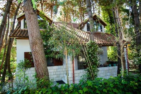 #IoniaHouse Turtle Villa