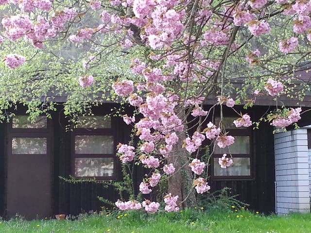 Gästezimmer im Park - Göhrde - Cabaña en la naturaleza