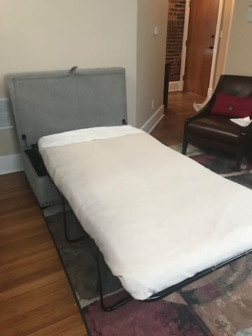 Single pull out bed in common area.