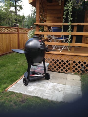 BBQ Grill and Supplies/Tools