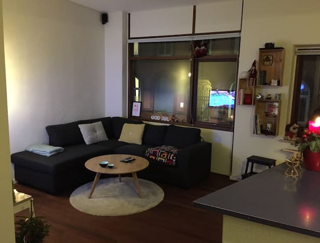 Big apartment located in center - Aarhus - Wohnung
