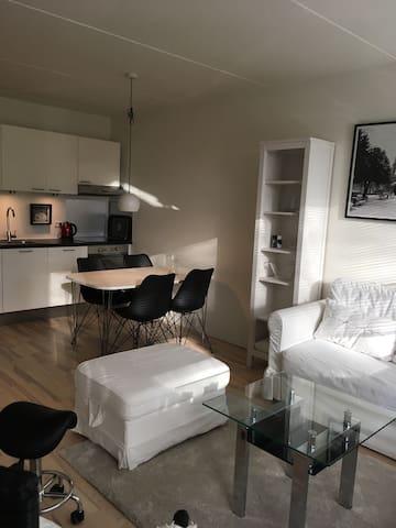 Charmerende og funktionel lejlighed - Humlebæk - Daire