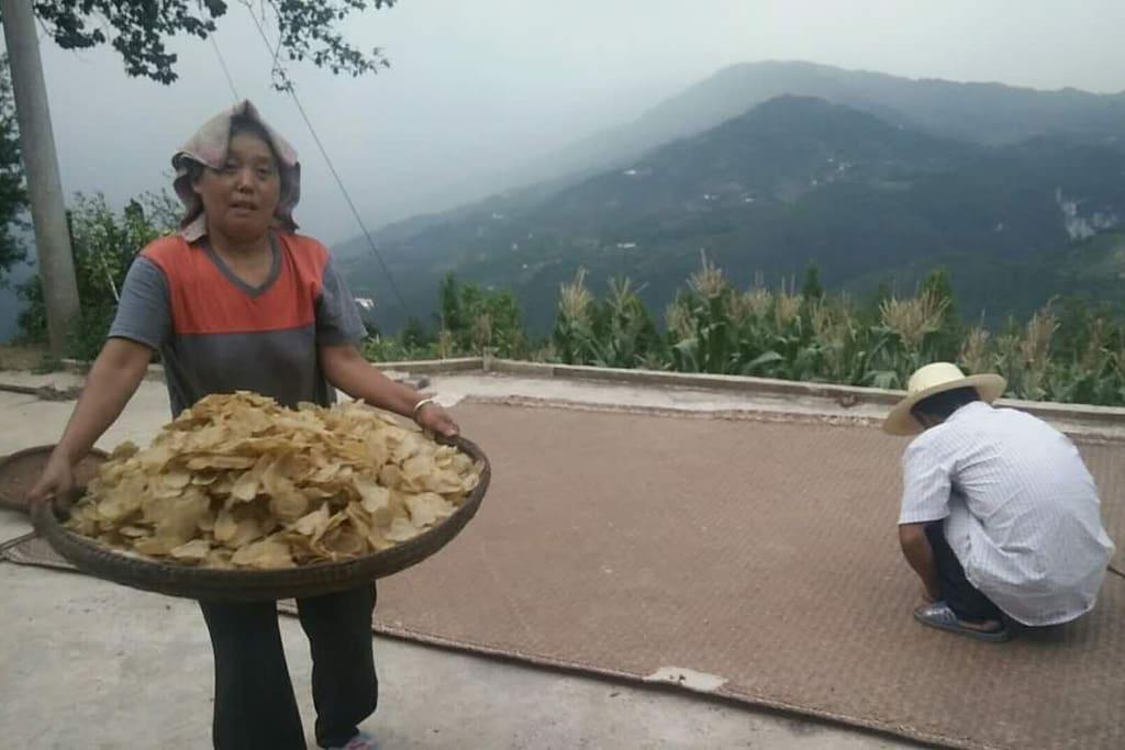 晒干的土豆片