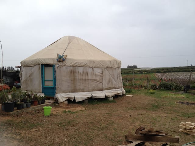 Simply yurt - Ge'ulim