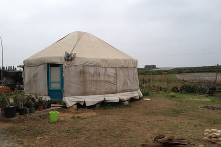 Simply yurt - Ge'ulim - Yourte