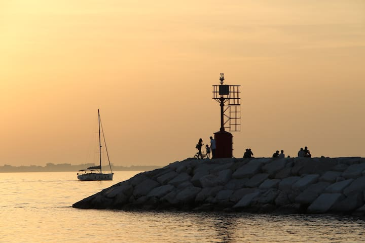 Il porto di Rimini Rimini's pier