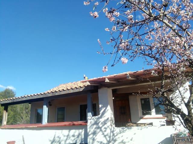 Casa del romero