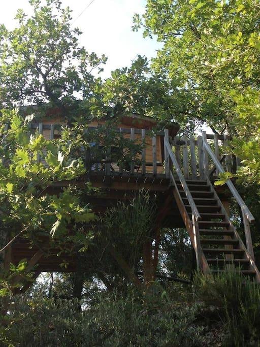 la cabane des amoureux un amour de cabane cabanes dans les arbres louer barjols provence. Black Bedroom Furniture Sets. Home Design Ideas