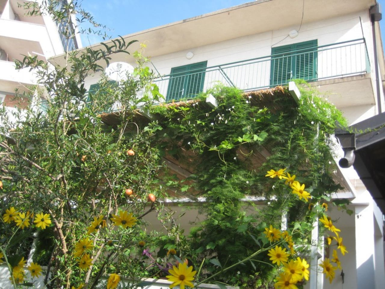 Front  apartment,big 100 squaer metar,comfortable,second floor,with big teraca,ideal for 6 person or two families