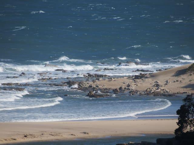 Montego Bay - Port Edward