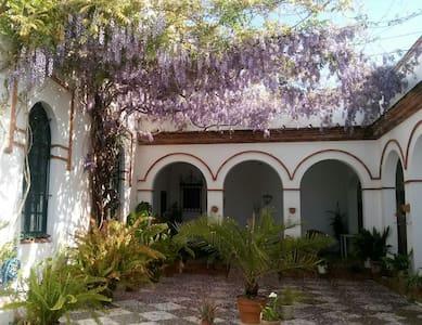 Habitación en la Jara I - Sanlúcar de Barrameda