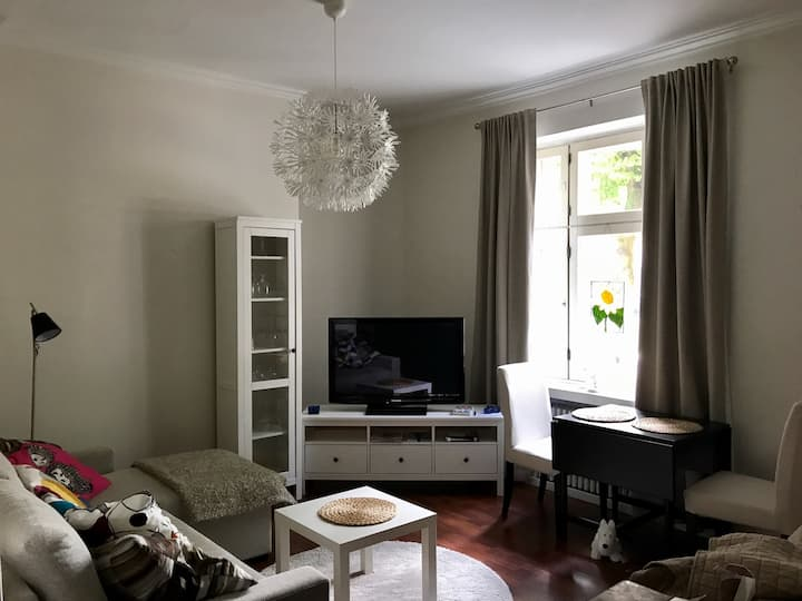 Cosy studio close to city center  and Pyynikki.
