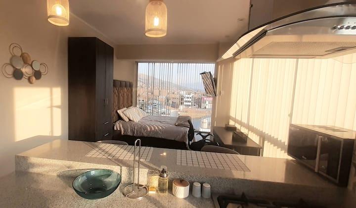 Calida y centrica Habitación tipo Appart Hotel.