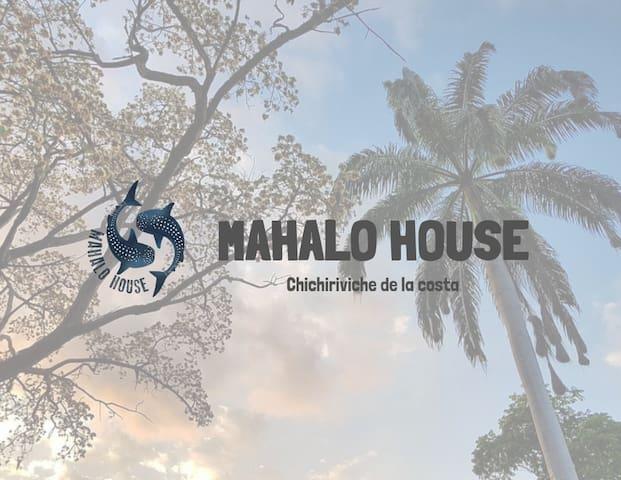 Mahalo House - Diseño y descanso.