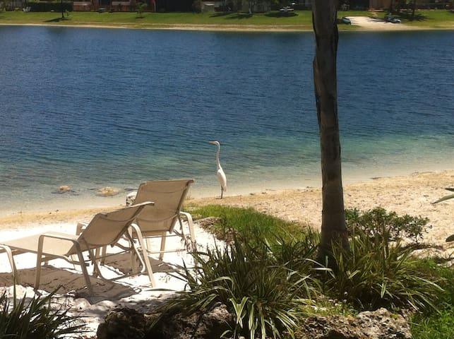 Designed for Comfort 3/2 Lakeside - Miami - Hus
